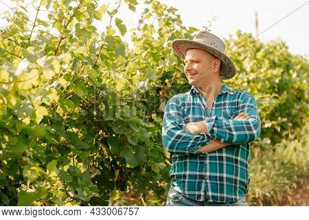 Young Caucasian Winemaker With Hat In Vineyard With Arms Crossed. Standing In Vineyards, Agriculture