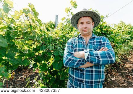 Top View Of Male Farmer Vinified Looking At Camera In Vineyard. Young Male With Hat On A Sunny Summe