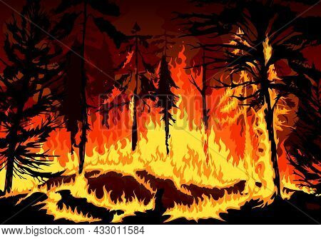 Pine Forest Fire, Wildfire Danger Disaster With Burning Trees, Grass And Bushes, Vector Background N