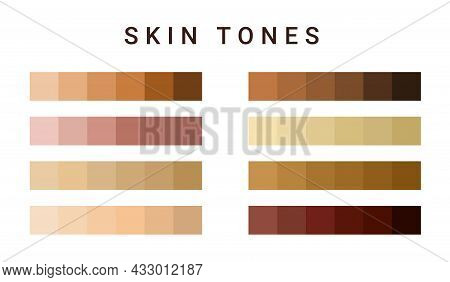 Skin Tone Color Scale Chart. Brown Palette Vector Human Skin Infographic Banner Icon