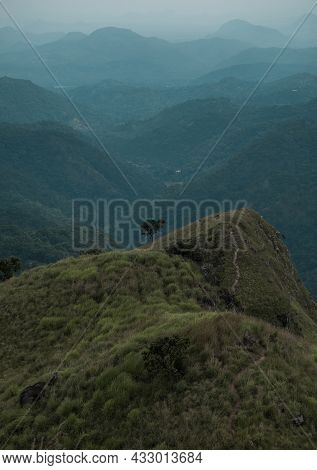 Alone Tree Stands On Top Of A Mountain Overlooking A Range Of Mountains. Scenic Mountain View. Mount