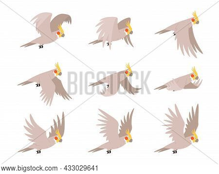 Cartoon Cockatoo Parrot Fly Animation Frames Sequence. Animated Sprites Loop Of Tropical Bird Flying