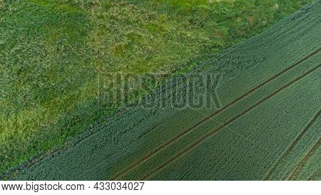 Rural Landscape. Top Down View Of Rural Field Meadow Scene. Countryside Agriculture Field Meadow Lan