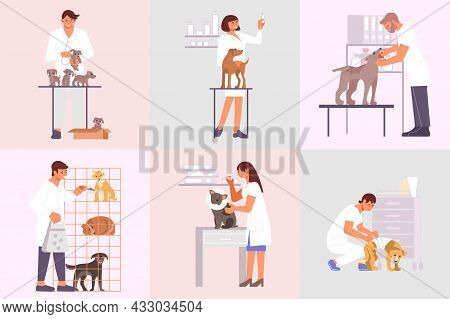 Veterinary Clinic Compositions Set Of Flat Animals And Characters Of Medical Specialists Taking Care