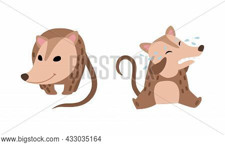 Cute Opossum Animal Crying And Standing Vector Set