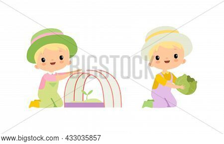 Little Blond Boy In Jumpsuit And Hat At Farm Holding Cabbage And Planting Rootstock Vector Set