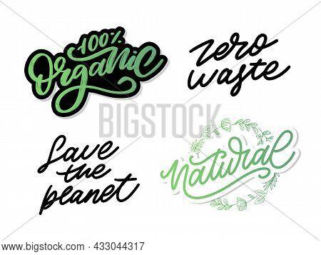 100 Natural Set Vector Lettering Stamp Illustration Slogan Calligraphy