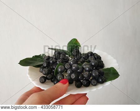 Black Chokeberry (aronia) Berries With Leaves On A White Plate