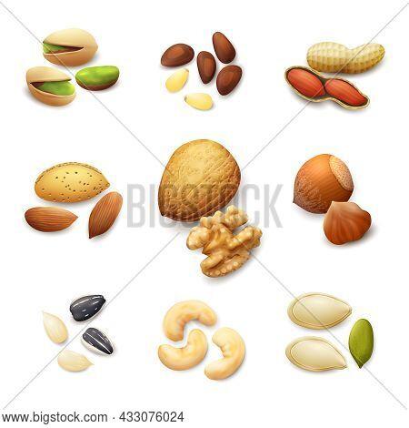 Nuts Realistic Set With Pistachio Almond Walnut Hazelnut Isolated Vector Illustration