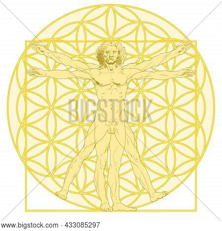Vector Design Of Vitruvian Man By Leonardo Da Vinci With Flower Of Life Background