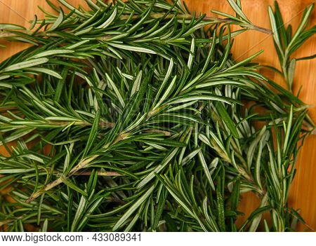 Close Up Fresh Green Rosemary Leaves On Wood, Elevated Top View, Directly Above