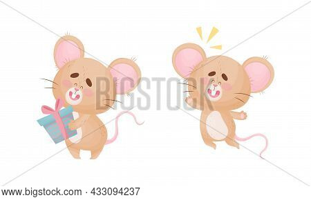 Cute Mouse Character As Small Rodent Jumping With Joy And Holding Gift Box Vector Set
