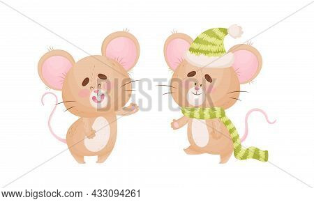 Cute Mouse Character As Small Rodent Wearing Knitted Hat And Waving Paw Vector Set