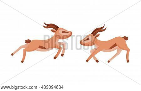 Running And Jumping African Gazelle As Fawn-colored Antelope Species With Curved Horn Vector Set