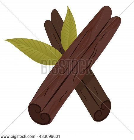 Two Vector Cinnamon Sticks Isolated On White Background. Colored Botanical Illustration Of Cinnamon