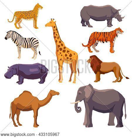 Africa Animal Decorative Set With Leopard Zebra Hippo Giraffe Camel Elephant Lion Tiger Rhino Isolat