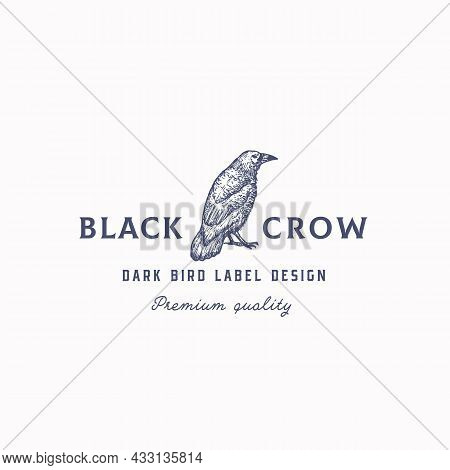 Black Crow Abstract Vector Sign, Symbol Or Logo Template. Hand Drawn Raven Or Crow Bird Sketch Silho