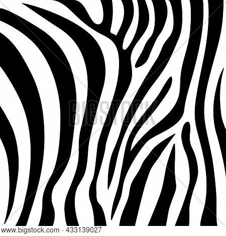 Zebra Seamless Pattern, Vector Design And Isolated Background Seamless.