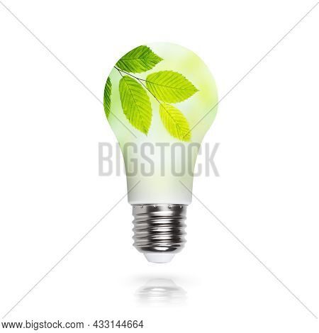 Renewable Energy, Sustainability, Ecology Concept. Light Bulb Made Of Green Plants Isolated Over Whi