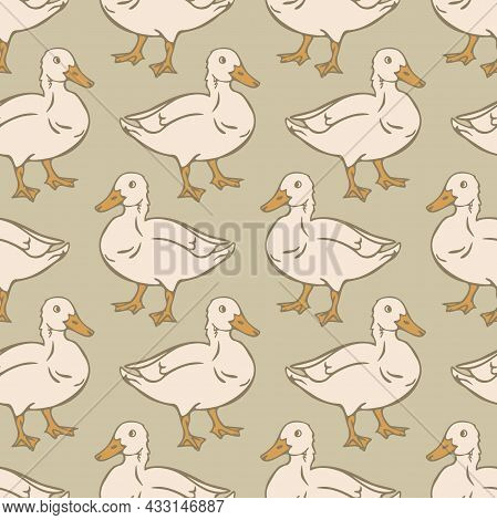 Vector Seamless Pattern With Domestic Duck. Design With Hand Drawn Duck.