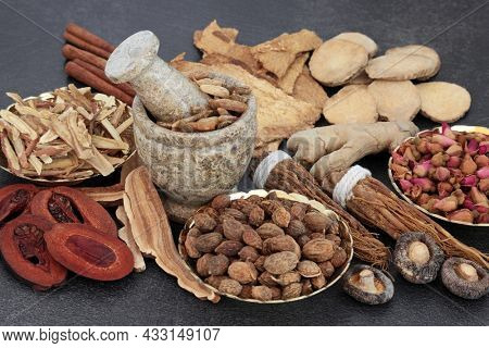 Chinese plant based herbal medicine with a collection of herbs and spice on slate background used in traditional natural healing remedies.
