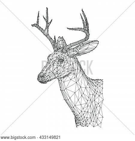 Deer Head Antler Vector Illustration Mammal With Horn Stag. Wildlife Reindeer Head Icon Hunt. Wild D