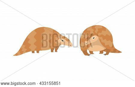 Pangolin Or Scaly Anteater With Clawed Paw Standing Vector Set