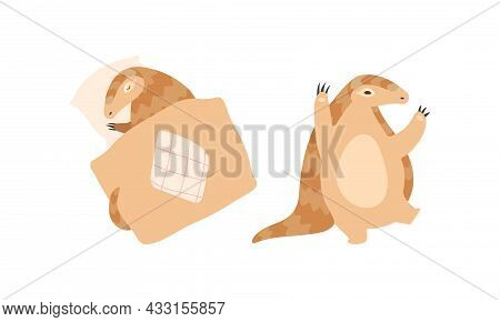 Pangolin Or Scaly Anteater With Clawed Paw Dancing And Sleeping Covering With Blanket Vector Set