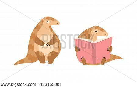 Pangolin Or Scaly Anteater With Clawed Paw Sitting And Reading Book Vector Set