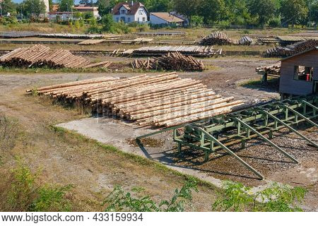 An image of wood factory with tree trunks