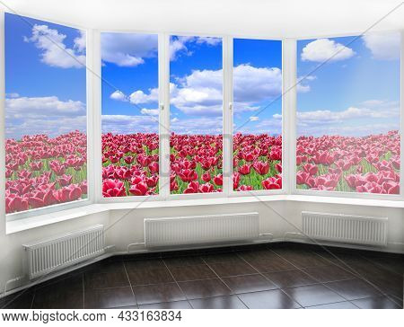 Panoramic Window Overlooking Field Of Red Tulips Against Blue Sky. Spring Garden. View From Room. Ro
