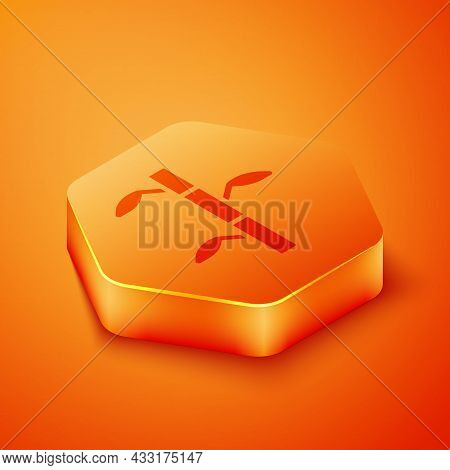 Isometric Bamboo Stems With Leaves Icon Isolated On Orange Background. Orange Hexagon Button. Vector