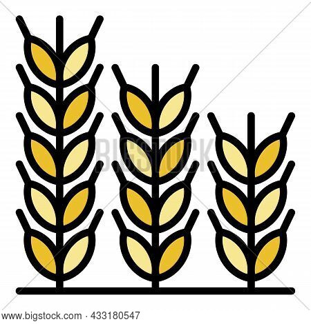 Wheat Icon. Outline Wheat Vector Icon Color Flat Isolated On White