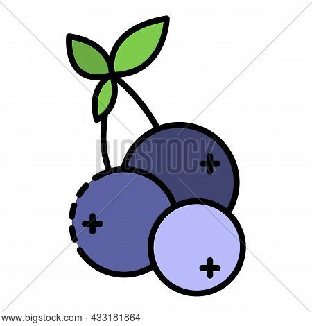 Blueberry Icon. Outline Blueberry Vector Icon Color Flat Isolated On White