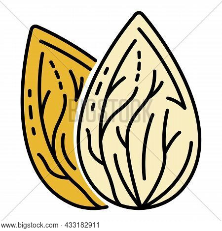 Fresh Almond Nut Icon. Outline Fresh Almond Nut Vector Icon Color Flat Isolated On White