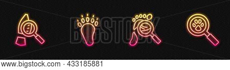 Set Line Magnifying Glass With Footsteps, , Bear Paw Footprint And Paw Search. Glowing Neon Icon. Ve