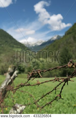 Close-up Of Barbed Wire Fence In Pasture In Alpine Environment