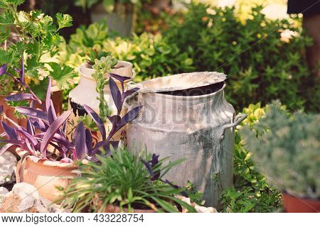 Reused Planter Ideas. Old Cans Turn Into Garden Flower Pots. Recycled Garden Design, Diy And Low-was