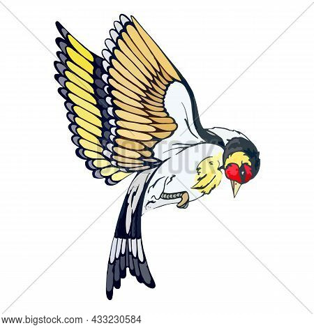 Forest Goldfinch With Colored Plumage In Flight. American Goldfinch For Design Card Or Invitation. P