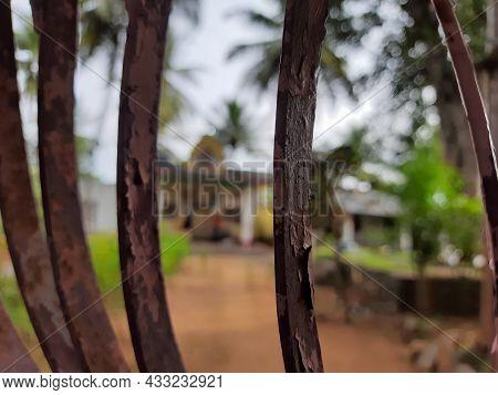 Closeup Of Shri Surya Narayana Shabari Matha Ashram Name Board And Building Near Ammalli Doddi, Sath