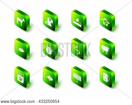 Set Macaw Parrot, Shark Fin In Ocean Wave, Sheep Head, Dog, Snake, Zoo Park And Fish Icon. Vector