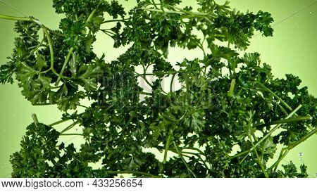 Super slow motion of fresh parsley flying in the air, close-up.
