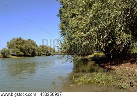 Travel In The Danube Delta, On The Dunavat Canal. Picturesque Places For Boat Trips And Unique Event