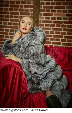Portrait of a blonde woman wearing an expensive silver fox fur coat sitting on a sofa. Luxury lifestyle. Fur coat fashion.