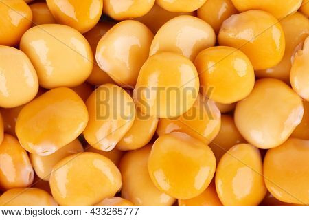Pickled Yellow Lupine Beans Background. Tournus, Preserved Lupinus.