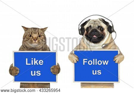 A Dog Pug And Beige Cat Are Holding Blue Signs T Says Like Us And Follow Us. White Background. Isola