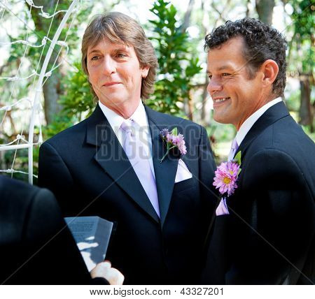 Handsome gay couple getting married in outdoor ceremony.