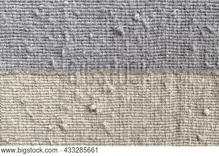 Dirty Old Rug Or Carpet With Cat Scratching And Lots Of Dust On It. Pulled Threads Rug Or Carpet Rep