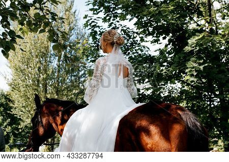 Beautiful Young Bride Rider In White Wedding Dress Sits Astride Brown Horse, Back View. Outdoor Wedd