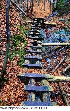 wooden steps in gorge in mountain forest. Take it in Slovakia Tatra mountains